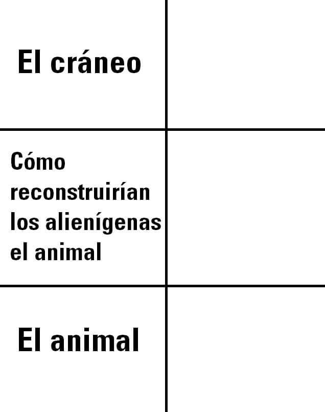 Ir a la pagina de la plantilla El cráneo | Cómo reconstruirían los alienígenas el animal | El animal.