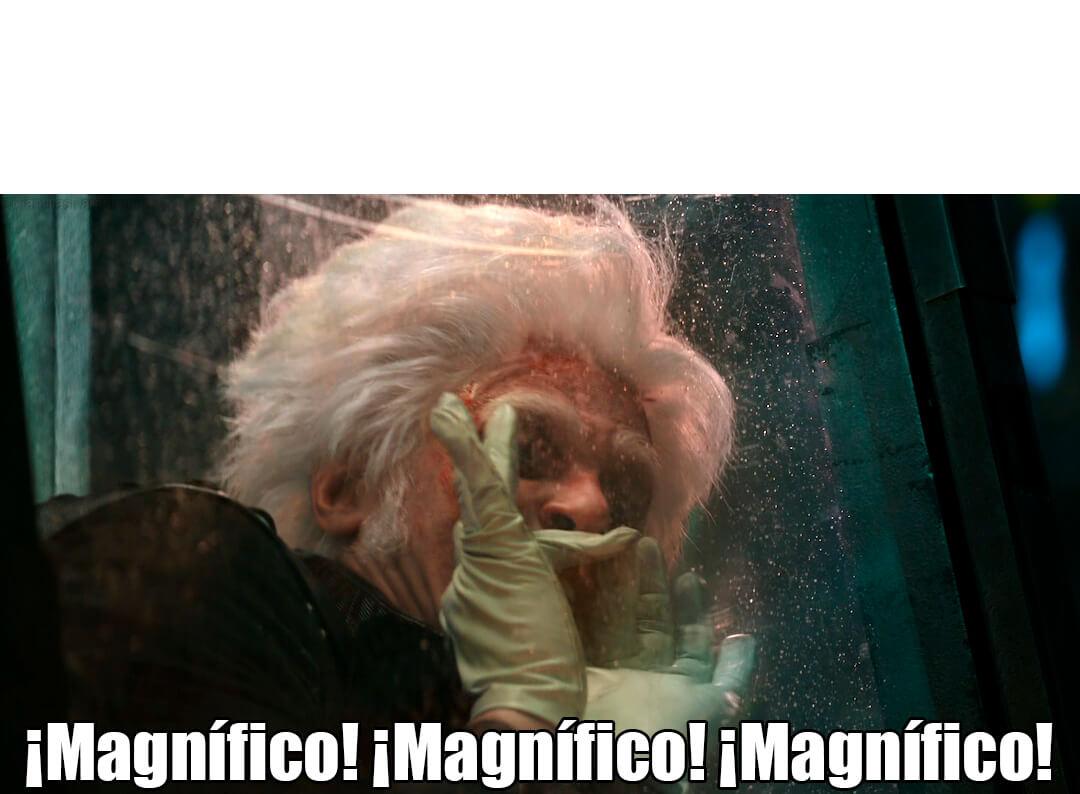 Ir a la pagina de la plantilla Magnifico Magnifico Magnifico.