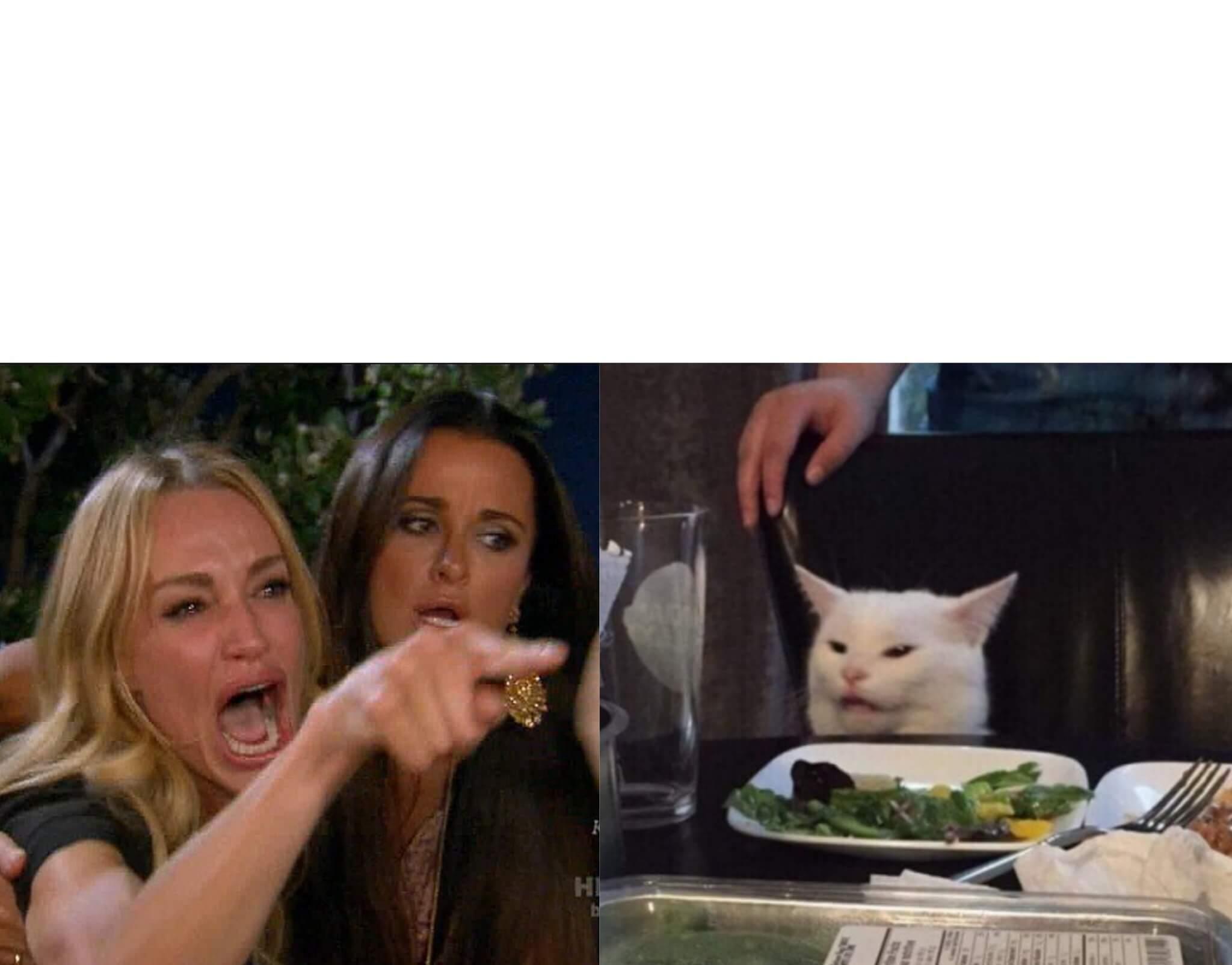 Mujer Gritando Gato En La Mesa Plantillas De Memes