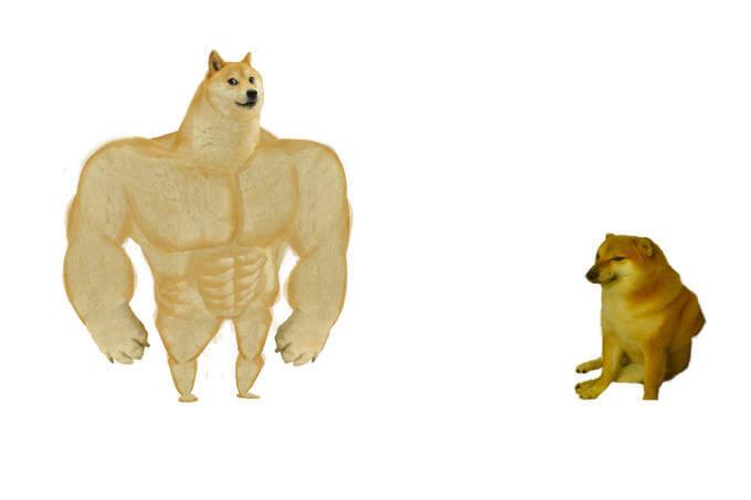 Ir a la pagina de la plantilla Perro fortachon / musculoso | Perro sentado.