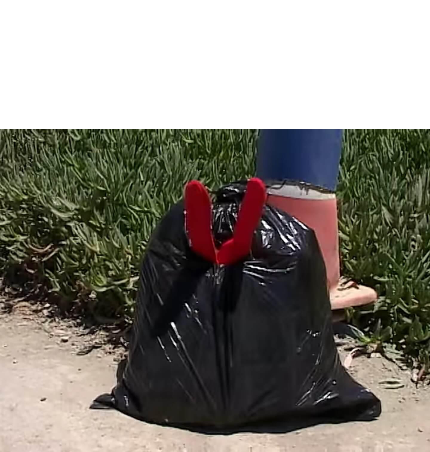 Plantilla de Por razones que desconozco, terminé adentro de esta bolsa de basura