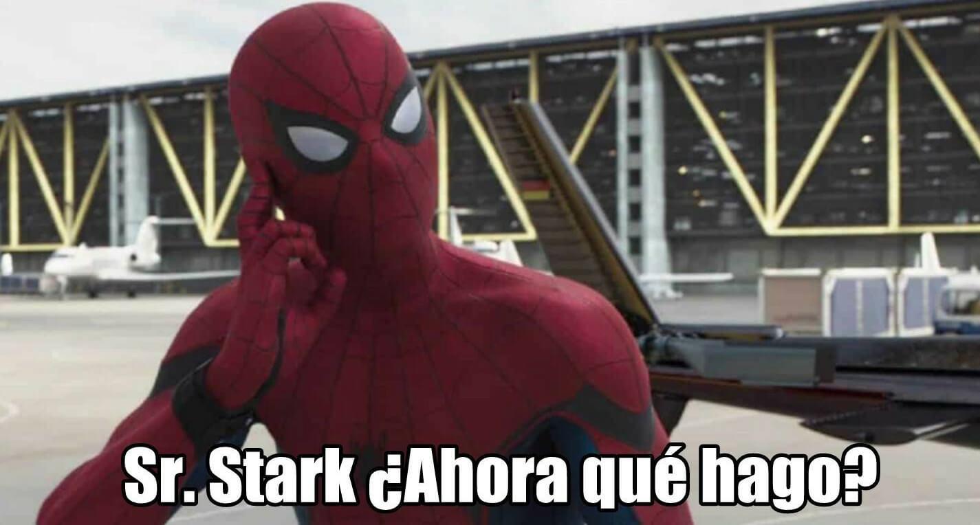 Plantilla de Sr Stark, ¿Ahora que hago?