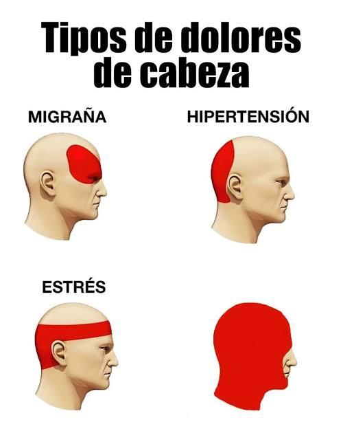 Ir a la pagina de la plantilla Tipos de dolores de cabeza.